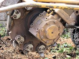 The business end of a Stump Grinder.